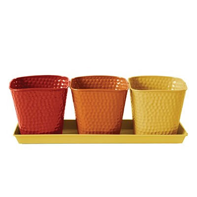 Herb Garden Set - Selby Butterscotch