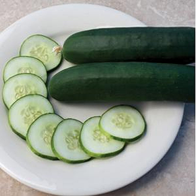 Cucumber 'Slice More'