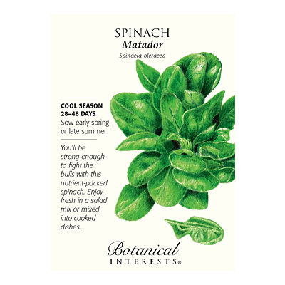 Seeds - BI Spinach Matador