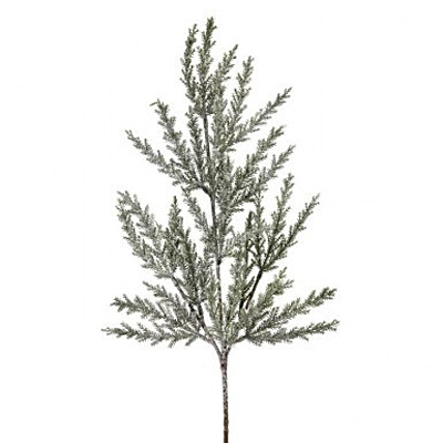 Spray - Frosted Prickly Juniper