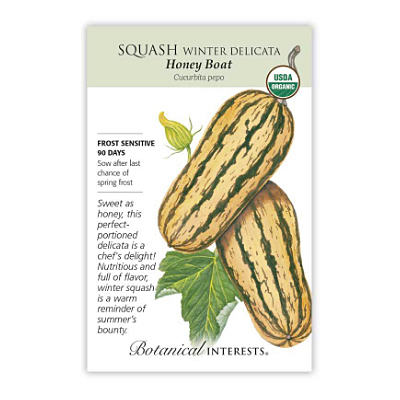 Seeds - BI Squash Winter Delicata Org