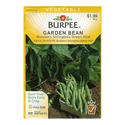 Seeds - Bean, Bushsnap 'Burpee's Stringless Green Pod'