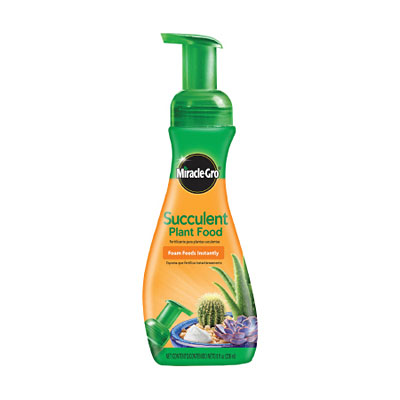 Miracle-Gro Succulent Plant Food - Foaming