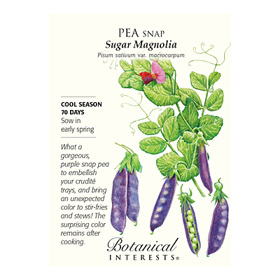 Seeds - BI Pea Snap Purple Sugar Magnolia