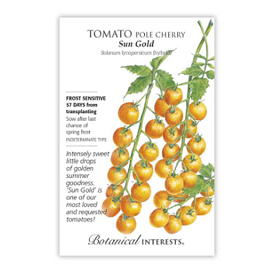 Seeds - BI Tomato Cherry Sun Gold