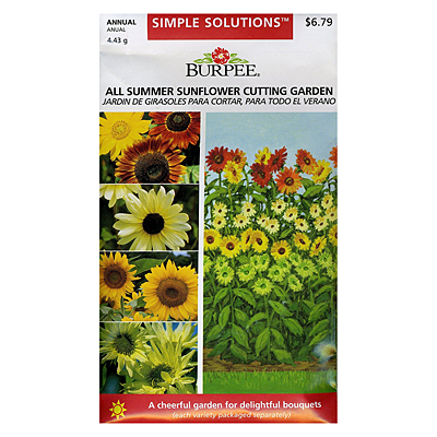 Seeds - VP Simple Solutions, All Summer Sunflower Cutting