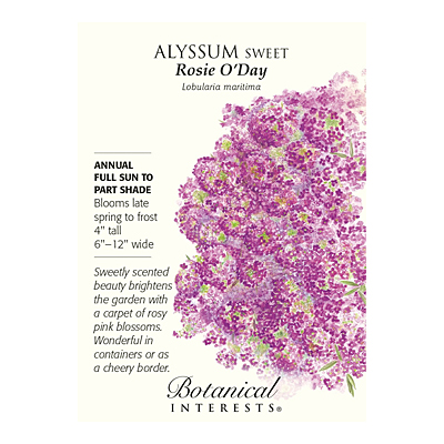 Seeds - BI Alyssum Sweet Rosie O'Day