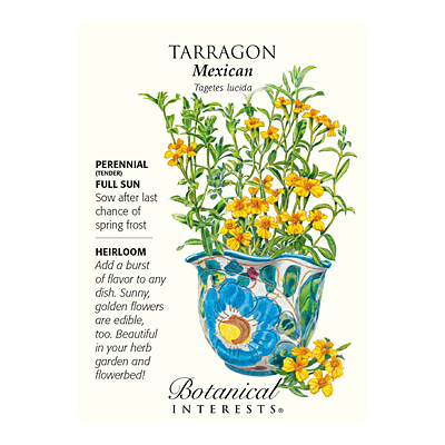 Seeds - BI Tarragon Mexican