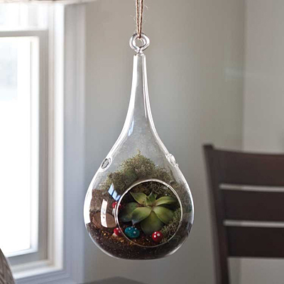 Mika Glass Teardrop Terrarium with Jute Hanger