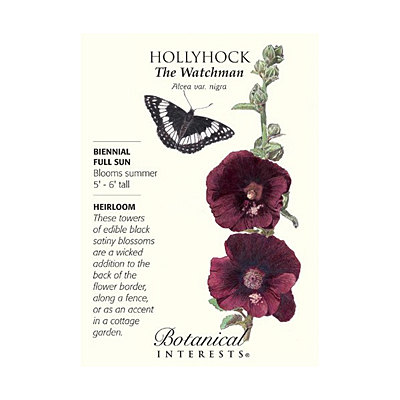Seeds - BI Hollyhock The Watchman