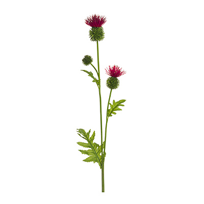 Thistle Spray - Red