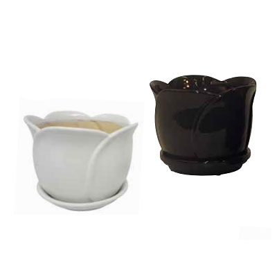 Tulip Pot with Attached Saucer - Black/White