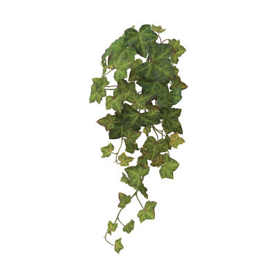 Silk Ivy Vine - Green