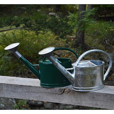 Watering Can - Galvanized French Style Oval